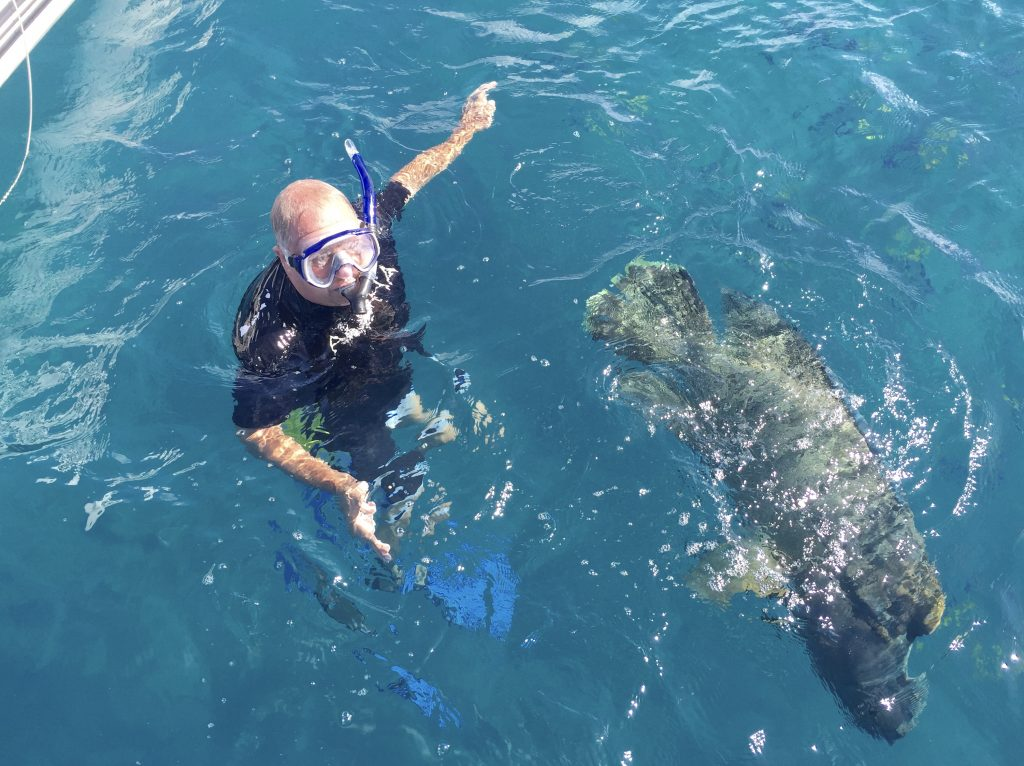 Vic with our resident Maori Wrasse.